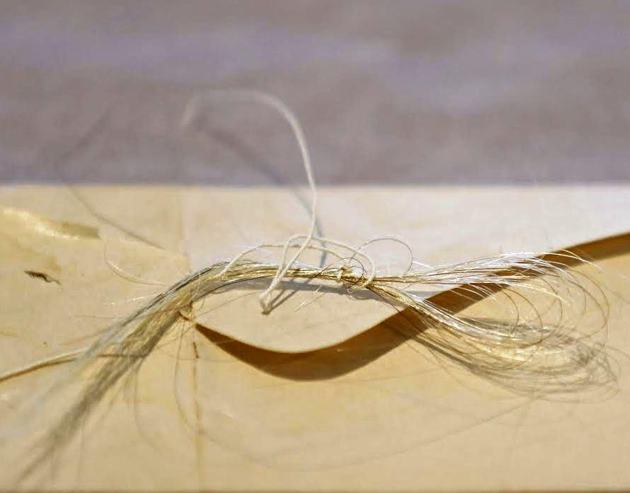 George Washington's Hair Reportedly Found Inside College Library Book