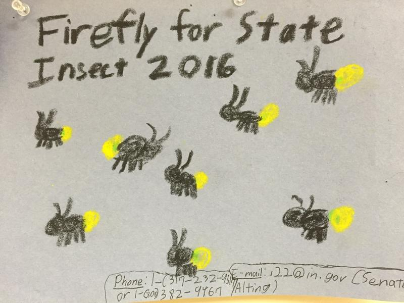 Cumberland Elementary students made posters advocating Indiana legislators designate Say's Firefly Indiana's state insect.