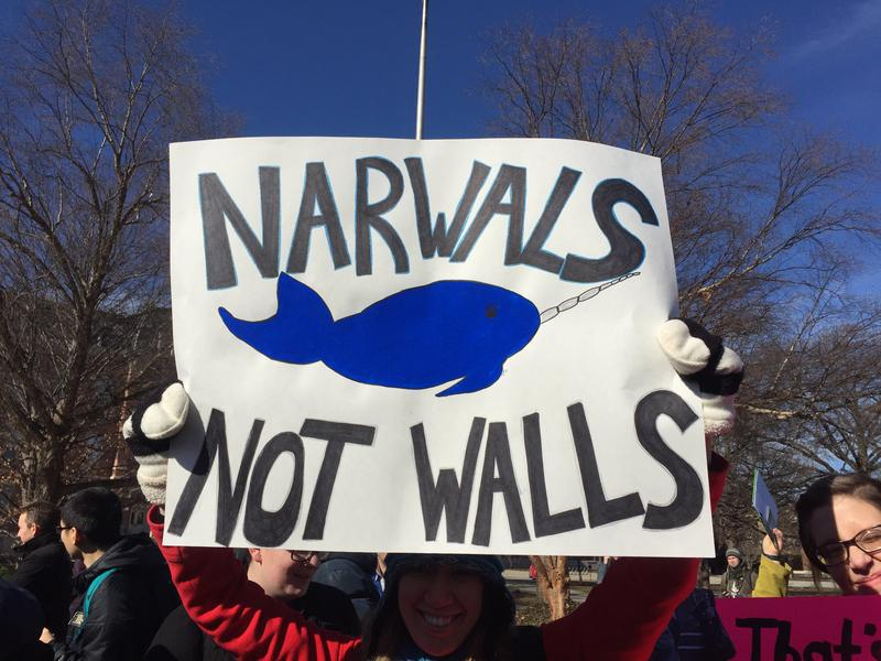 This sign denounced the wall by suggesting narwals as a replacement.