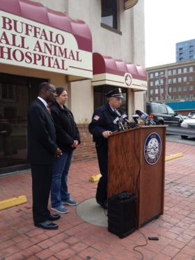 Buffalo Police Commissioner Daniel Derenda announces two arrests in puppy burning