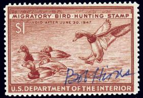 Federal Duck Stamp by Bob Hines