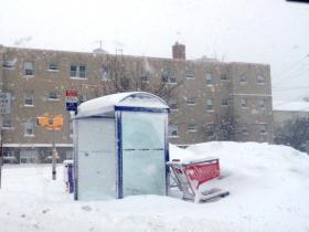 Bus shelter on Delaware Avenue at Great Arrow in North Buffalo covered with snow.