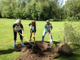 Buffalo Bills staff volunteering in Cazenovia Park in South Buffalo.