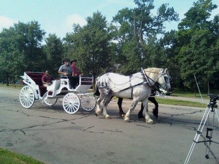 Horse and carriage rides at Delaware Park, Buffalo, NY