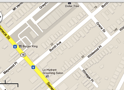 Burch Avenue in West Seneca near city-line