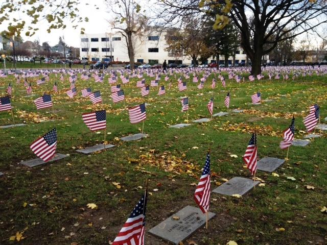 Flags placed on Veterans graves at Forest Lawn