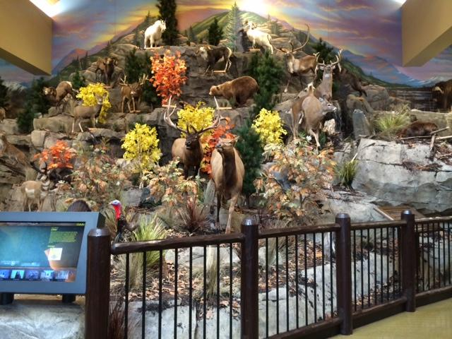 The custom built mountain inside Cabela's filled with taxidermy.