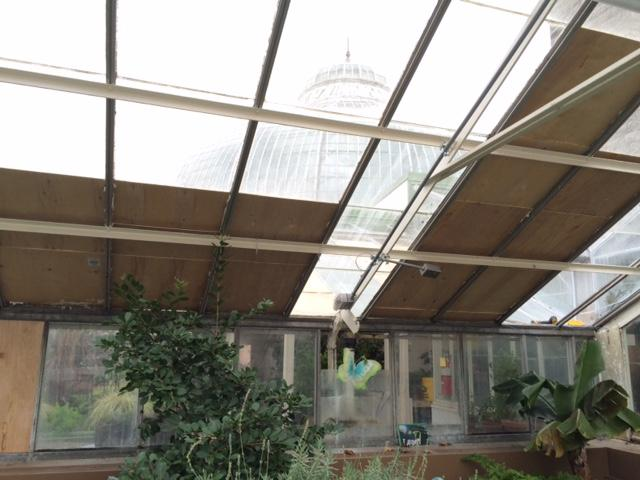 Botanical Gardens' windows shattered by heavy snow