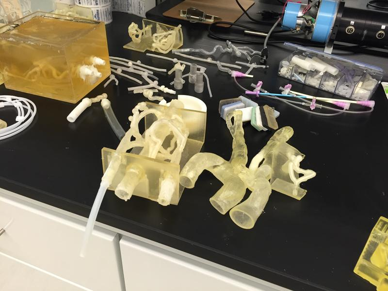 3-D printed models in the University at Buffalo's Clinical and Translational Research Center