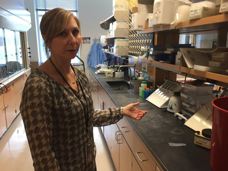 Colleen Hagler, Senior Research Support Specialist, discusses the equipment used on a labratory work bench at the University at Buffalo HIV and HCV Clinical Pharmacology Laboratory