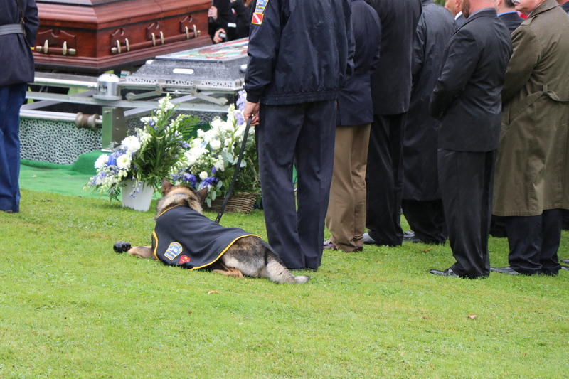Craig Lehner's faithful K-9 partner, Shield, stands by as Craig Lehner is laid to rest