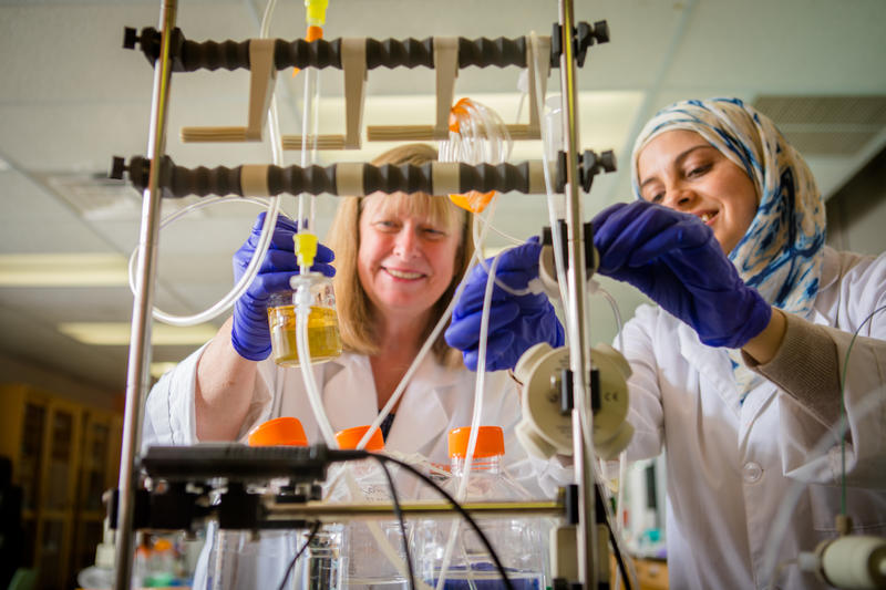 For-Robin President and Founder Kate Rittenhouse-Olson, left, with company scientist Diala Ghazal.