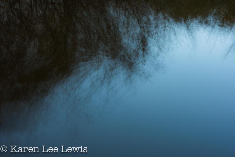 Blue Bristles