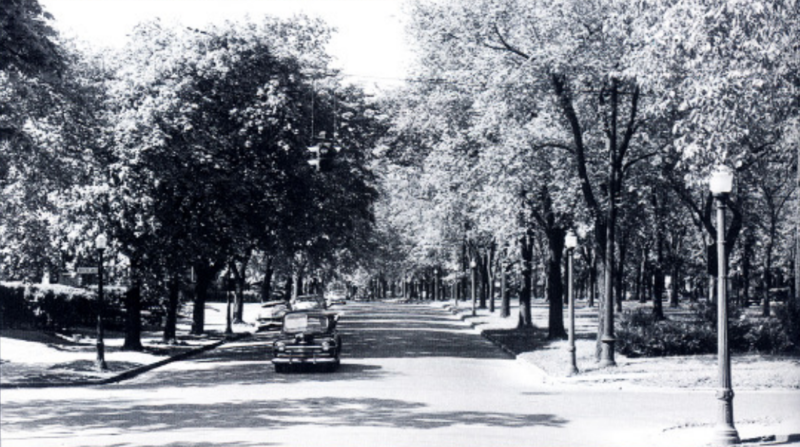 Humboldt Parkway before construction.