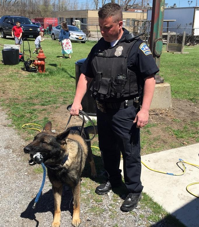 Buffalo Police dog Shield stands with his new handler, Officer Matthew Richards.