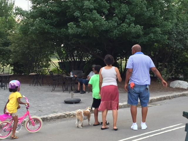Delaware Park is enjoyed by families.