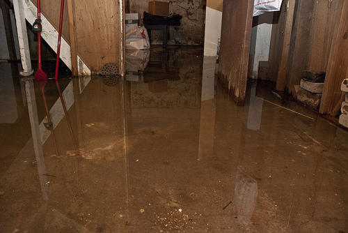 erie county department of health offers flood cleanup advice wbfo rh news wbfo org basement flood cleanup service kenton area basement flood cleanup service
