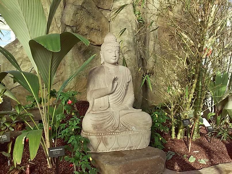 A Buddha Statue Sits Among The Plants Within The Asian Garden.