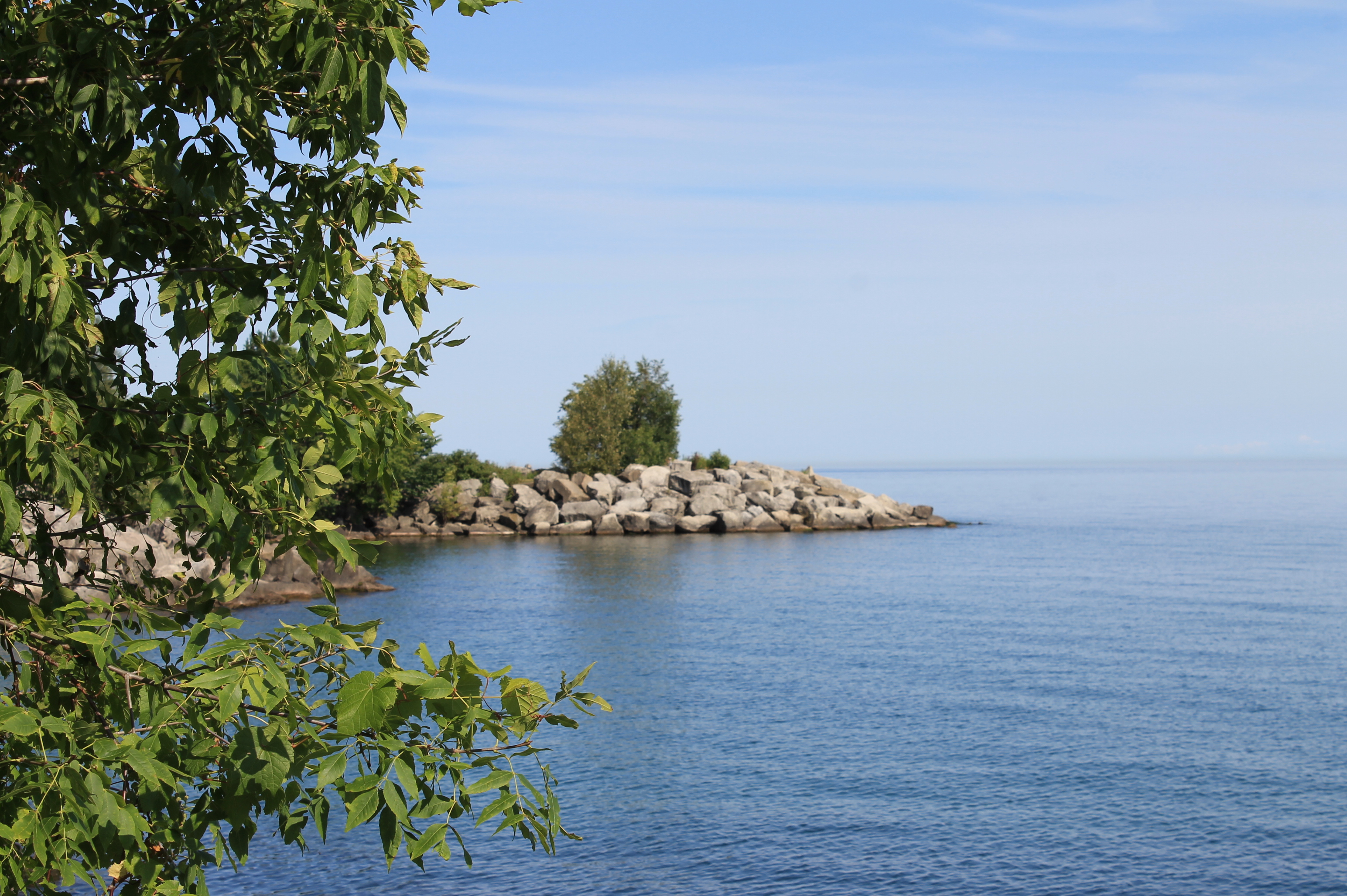an introduction and history of the lake ontario water Piston cores from deep-water bottom deposits in lake ontario contain shallow-water sediments such as, shell-rich sand and silt, marl, gyttja, and formerly exposed shore deposits including woody.