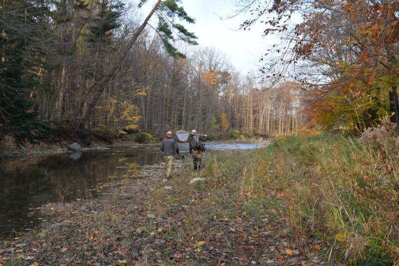 Will Spruance and Nate Miller walk down Elk Creek