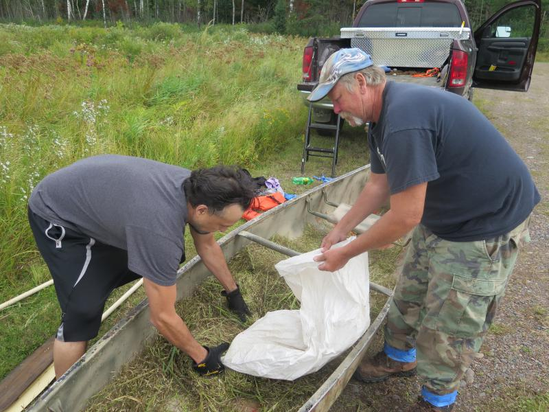 Jerrad Ojibway and Ed Jaakola bag wild rice they harvested from Deadfish Lake on the Fond du Lac reservation.