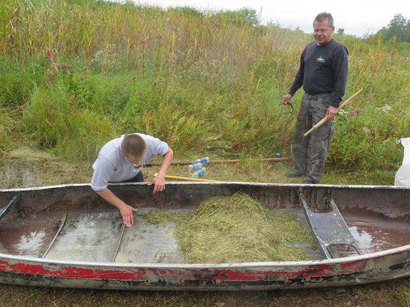 In Minnesota, Native Americans preserve the tradition of harvesting wild rice.