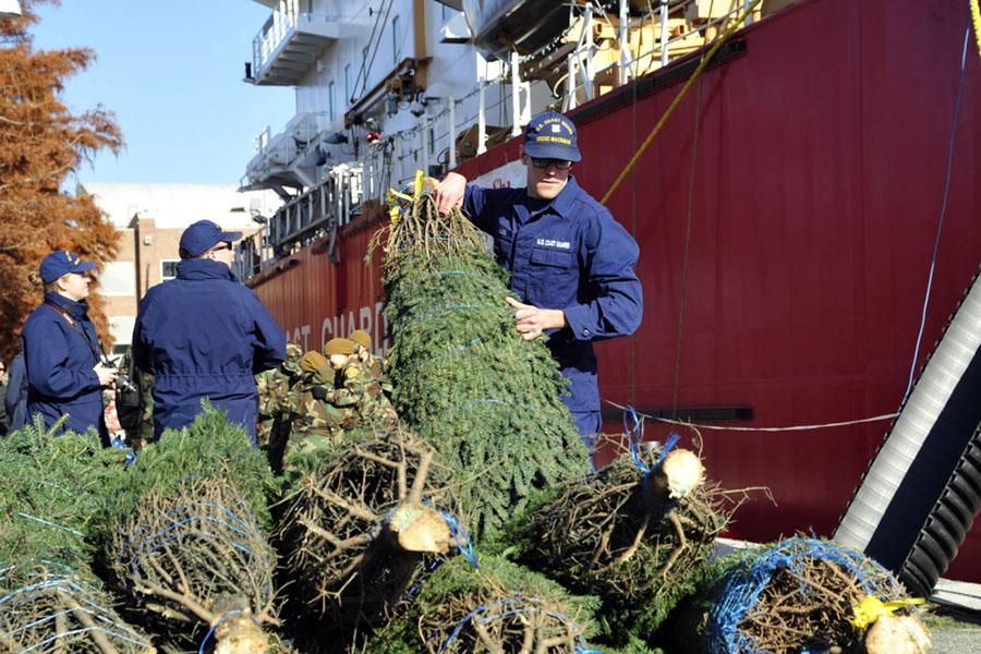 in chicago christmas trees were delivered by the coast guard cutter mackinaw - Christmas Tree In Chicago