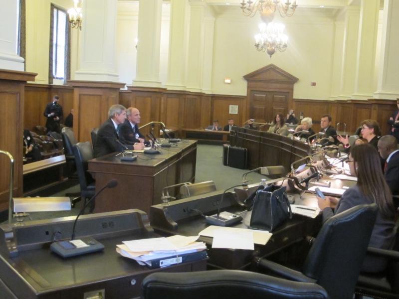 FieldTurf CEO Eric Daliere testifies at Senate committee hearing