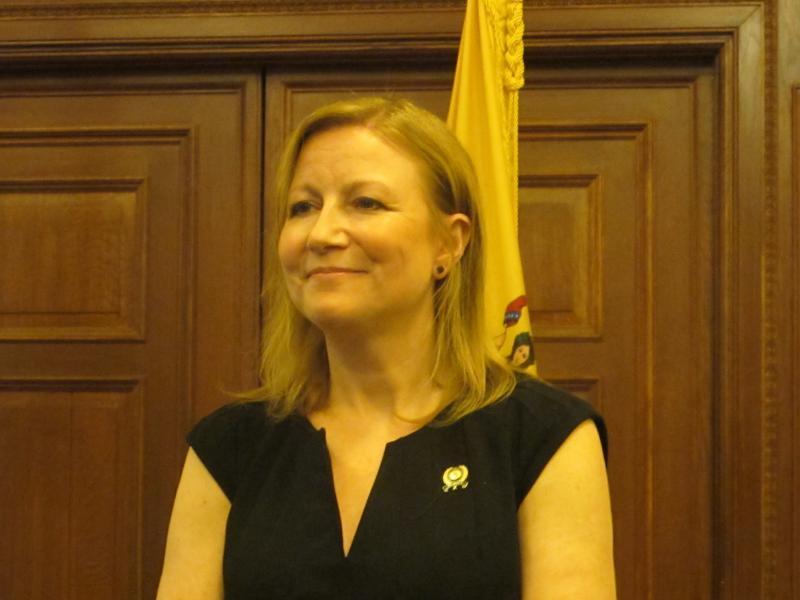 Assemblywoman Joann Downey
