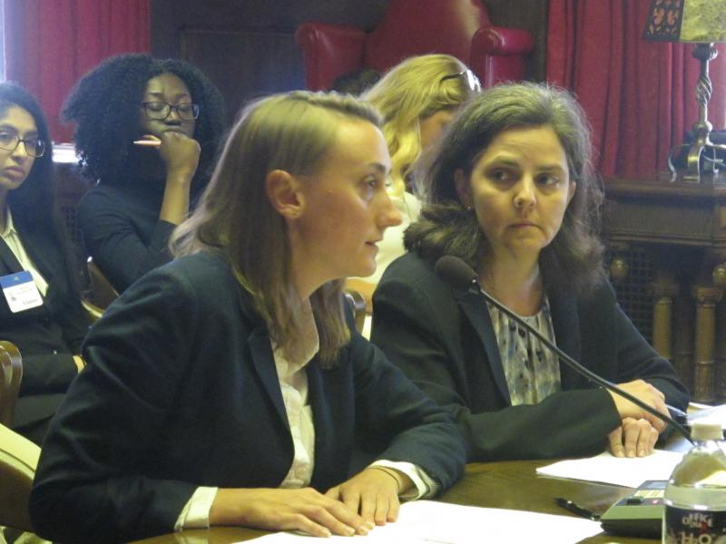 Attorneys and immigration advocates testify at legislative hearing
