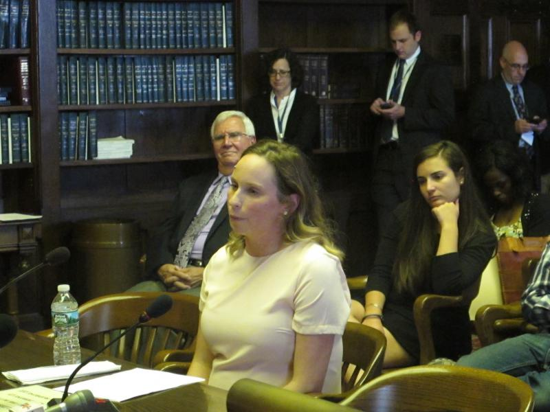 Andrea Strony testifies at Assembly Judiciary Committee hearing
