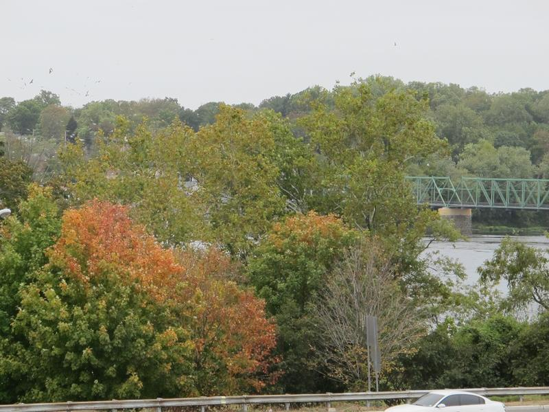 Trees starting to turn color along Delaware River in Trenton