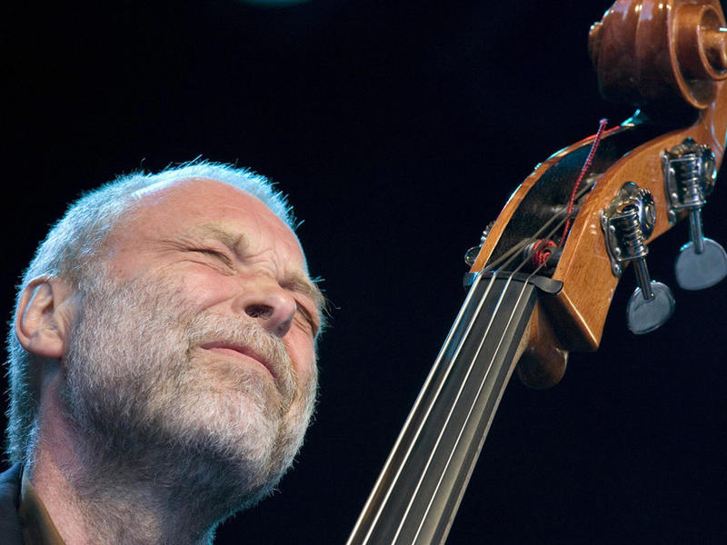 Bassist Dave Holland
