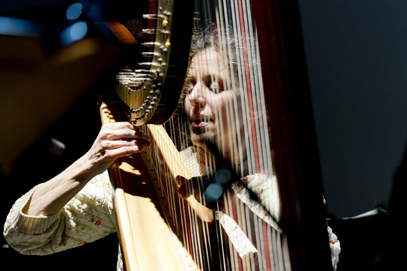 Zeena Parkins performing on harp in Sara Serpa's Recognition, at the New School