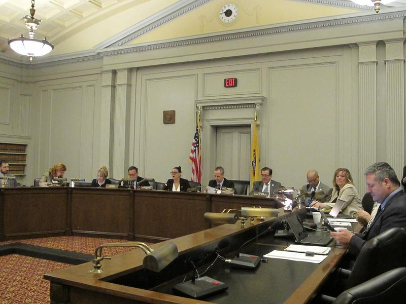Assembly Budget Committee holds hearing on Murphy's plan.