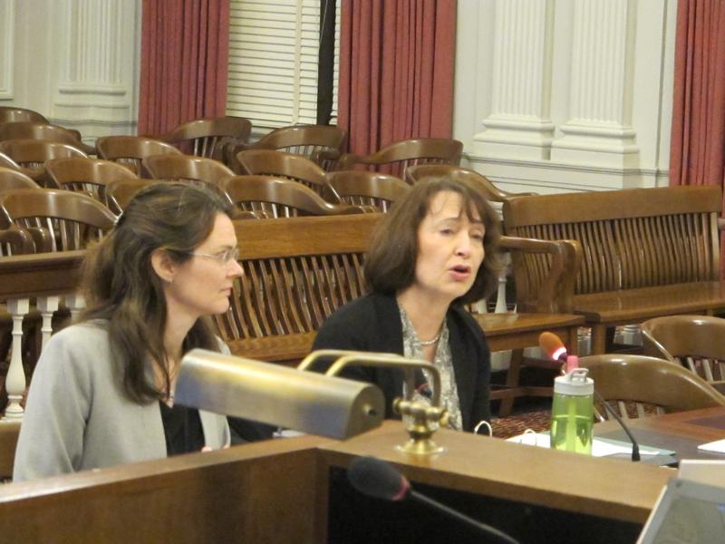 Catherine McCabe testifies at Assembly Budget Committee hearing