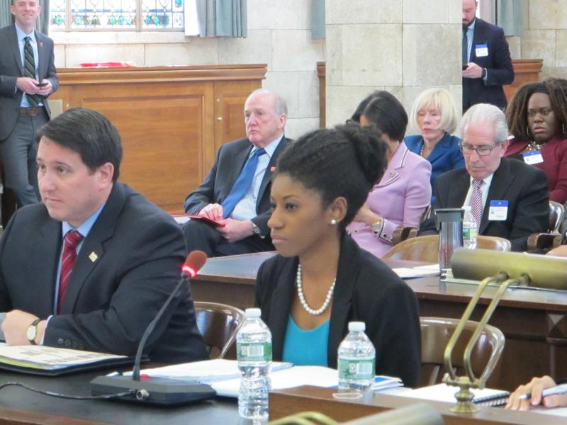 Acting Higher Education Secretary Zakiya Smith Ellis at Senate Budget Committee hearing