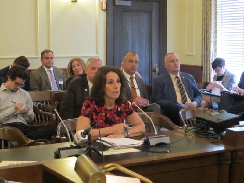 Assemblywoman Pamela Lampitt