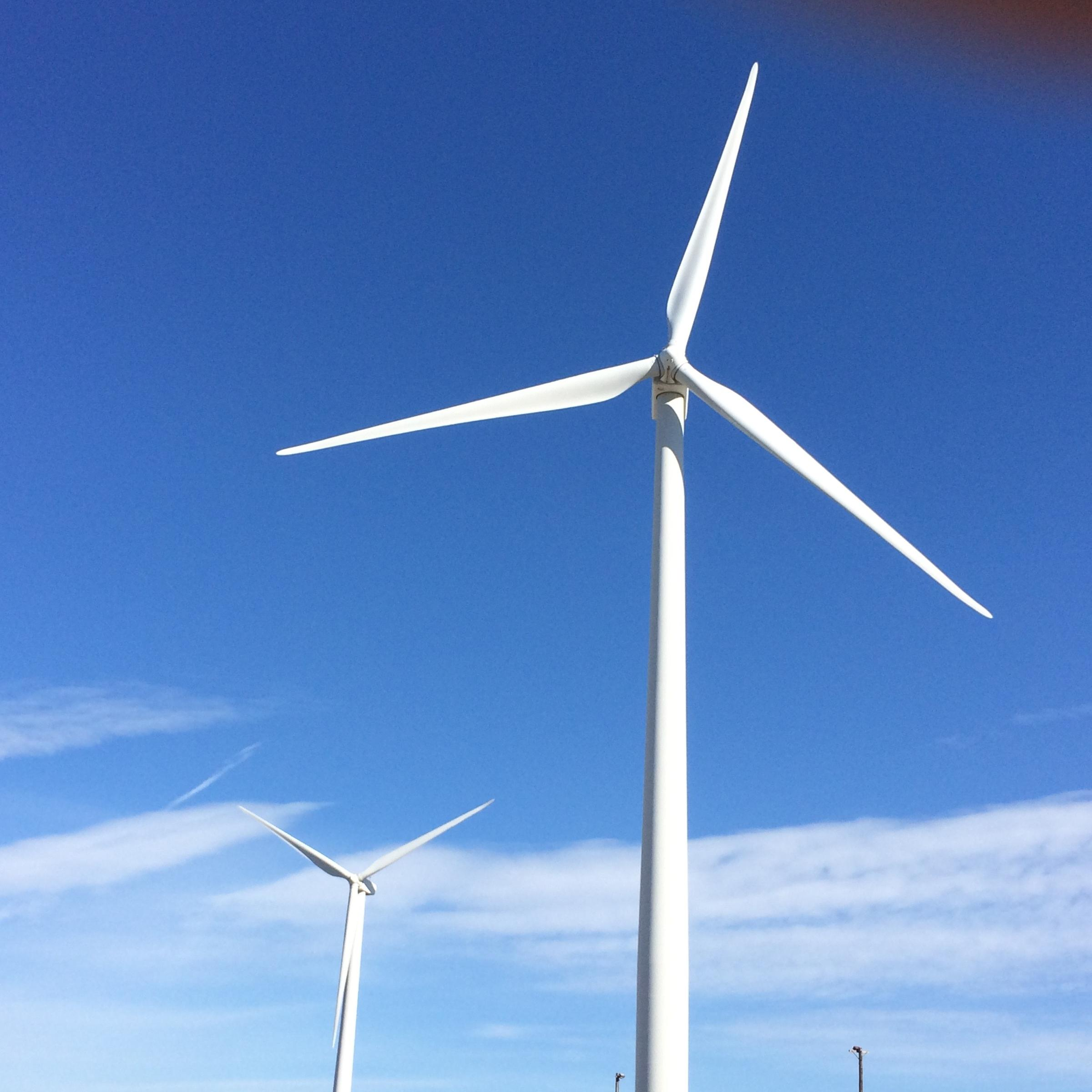 Murphy Commits to Wind Energy with New Executive Order