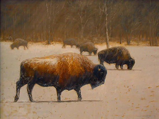 American bison at Wells County's Ouabache State Park was Wison's 1st painting of the project.