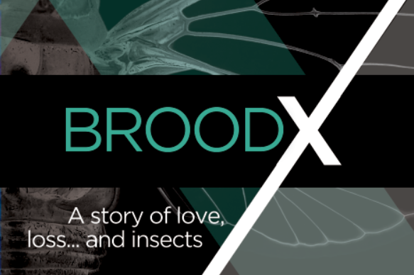 """The cover for Dan Stockman's new book, """"Brood X."""""""