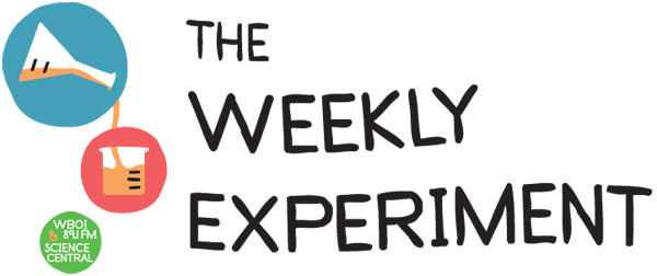 the weekly experiment northeast indiana public radio
