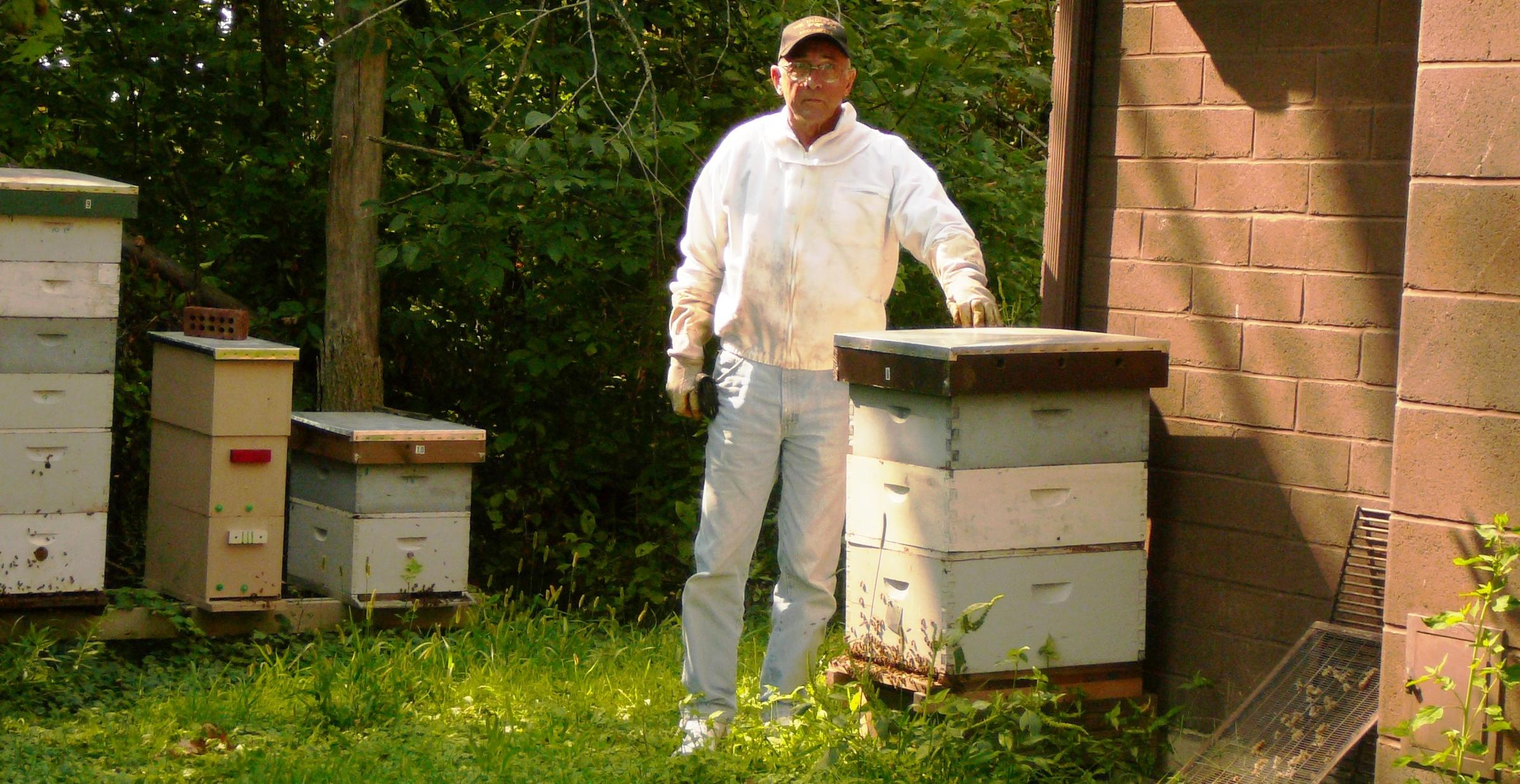 Gentil Backyard Beekeeping Is All The Buzz