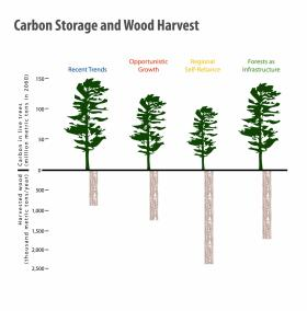 Each landscape scenario in the Changes to the Land report harvests a different amount of wood using a range of forestry practices. The Forests as Infrastructure scenario shows that it is possible to harvest twice as much wood while maintaining nearly the