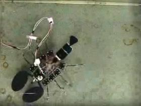 A RoboLobster designed to navigate using chemical cues.