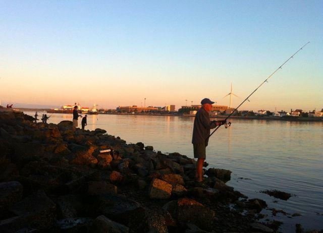 Fishermen line the rocky banks of the Cape Cod Canal, hoping the changing tide will bring large striped bass.