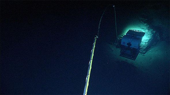 "A view of the Deep Discoverer remotely operated vehicle (ROV) from the Seirios camera sled in Heezen Canyon, shows just how ""up close and personal"" the ROV can get to rock outcrops and associated biology."