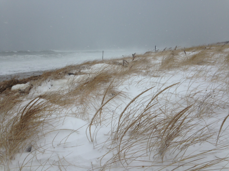 Town Neck Beach in Sandwich at 12:30p Today