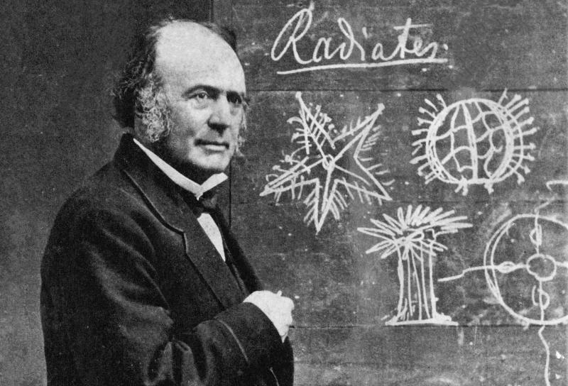 Jean Louis Rodolphe Agassiz, 1807-1873