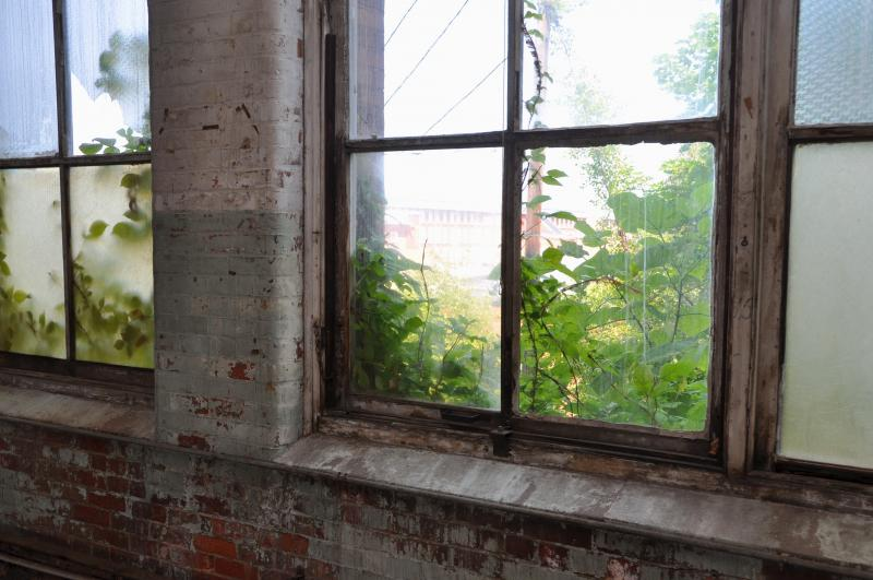 Looking out through a window inside the former Nashawena mill